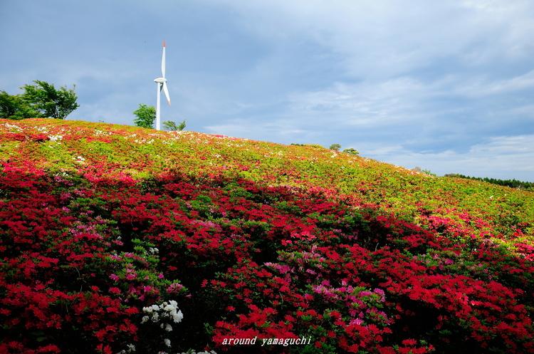 菅無田公園08.jpg