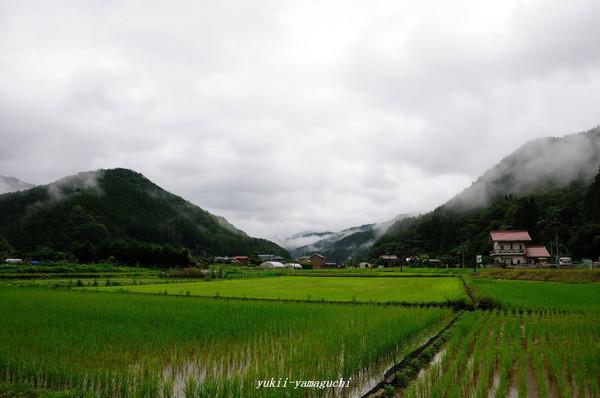 萩・川上03.jpg