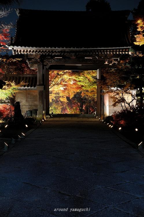 蓮光寺02.jpg