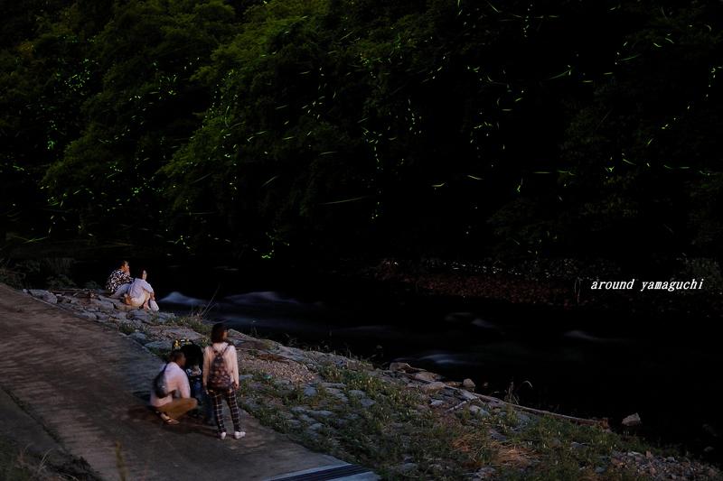 豊田町ほたる舟05.jpg