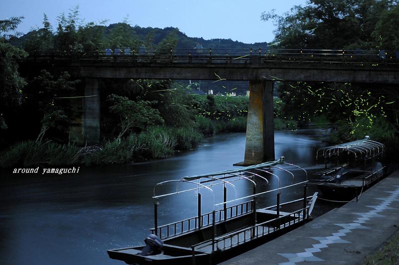 豊田町ほたる舟11.jpg