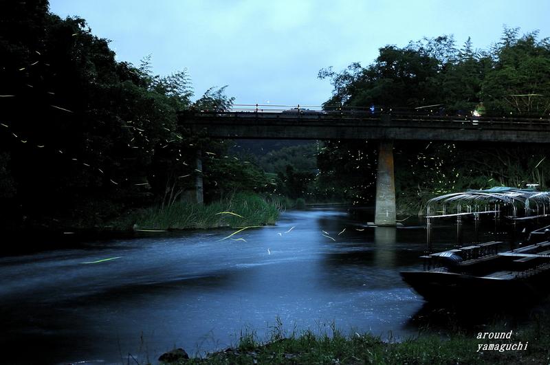 豊田町ほたる舟12.jpg
