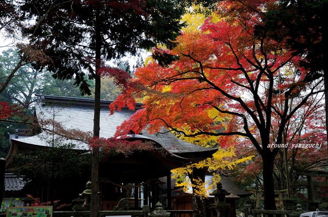 赤田神社01.jpg