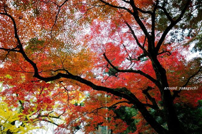 赤田神社03.jpg