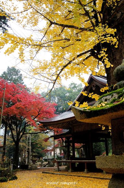 赤田神社04.jpg