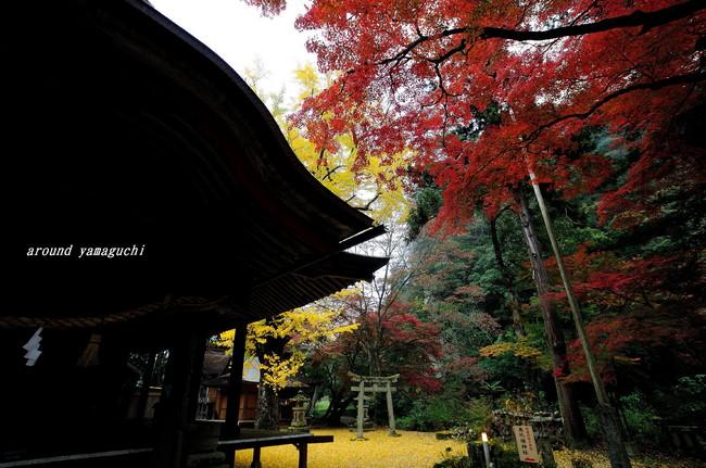 赤田神社08.jpg