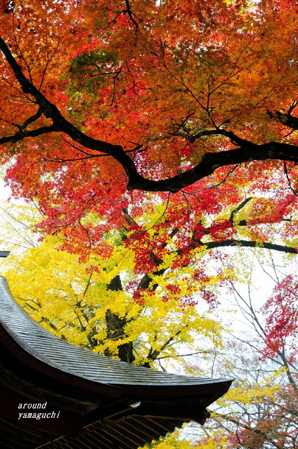 赤田神社09.jpg
