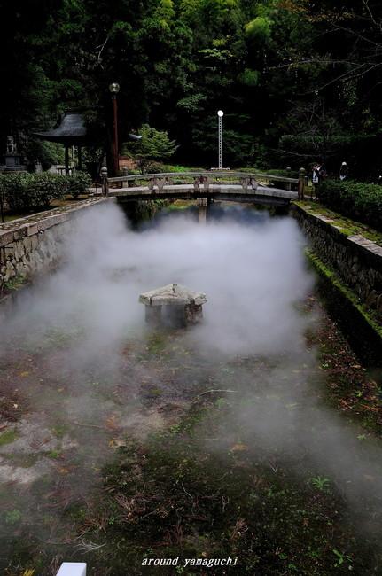 野田神社01.jpg