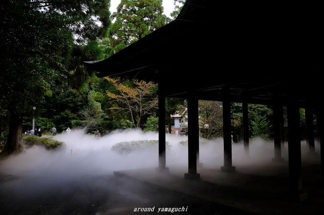 野田神社02.jpg