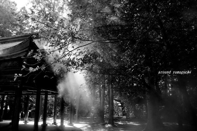 野田神社08.jpg