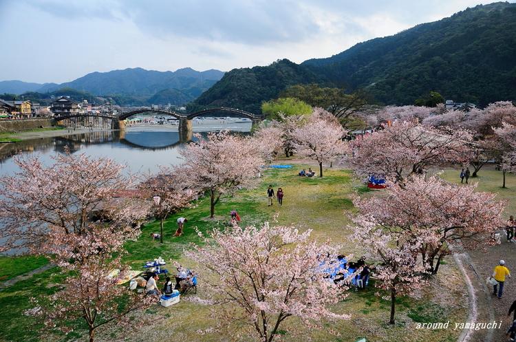 錦帯橋01.jpg