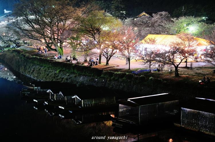 錦帯橋16.jpg