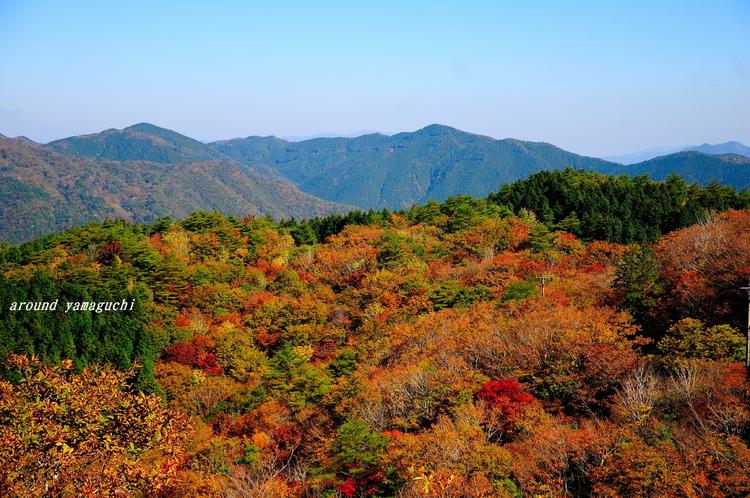 長野山08.jpg