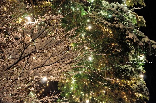 阿東町クリスマスイルミ04.jpg