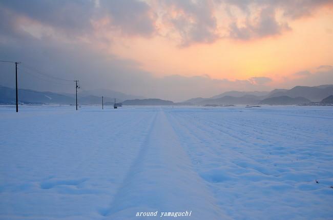 阿東町雪夕景07.jpg