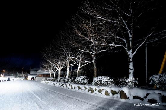 雪の朝01.jpg