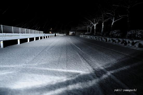 雪の朝05.jpg