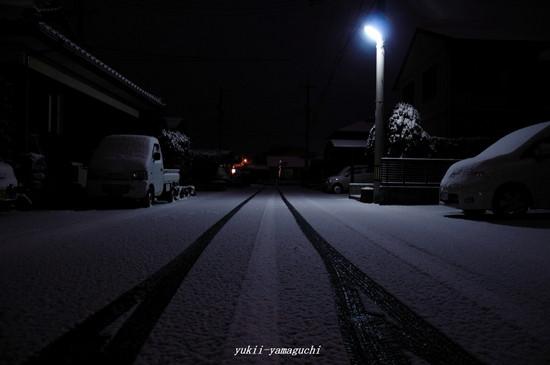雪の朝06.jpg