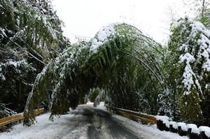 雪景色山口 004.JPG