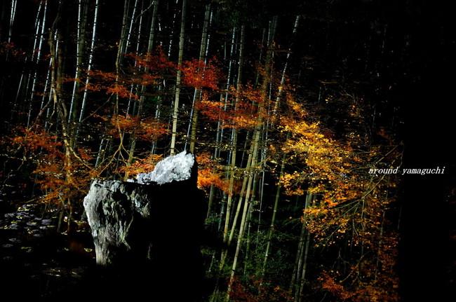 雪舟庭園09.jpg