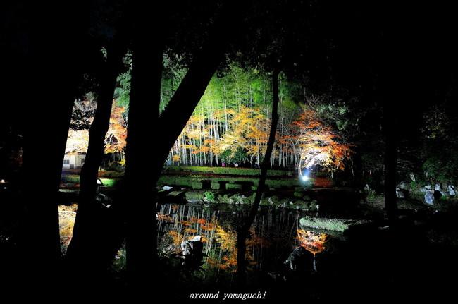 雪舟庭園12.jpg