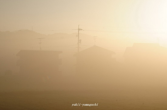 霧02.jpg