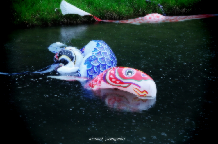 鯉のぼり05_NEW.jpg