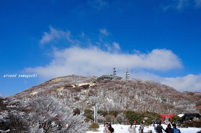 鶴見岳霧氷01.jpg