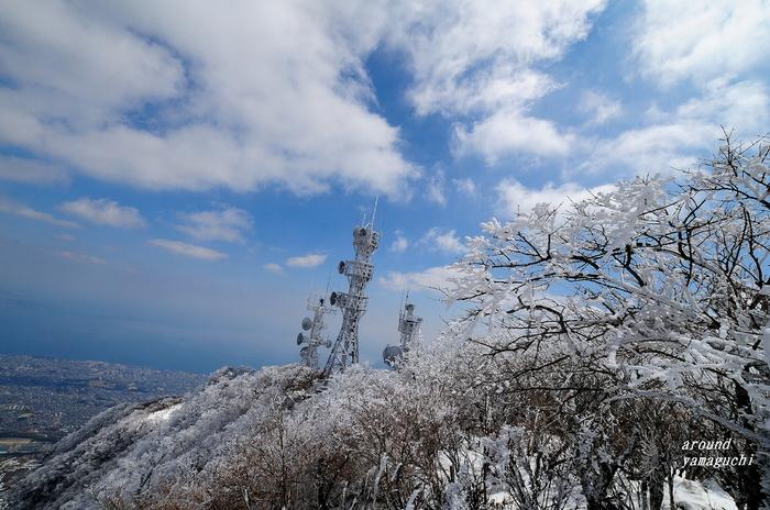 鶴見岳霧氷06.jpg
