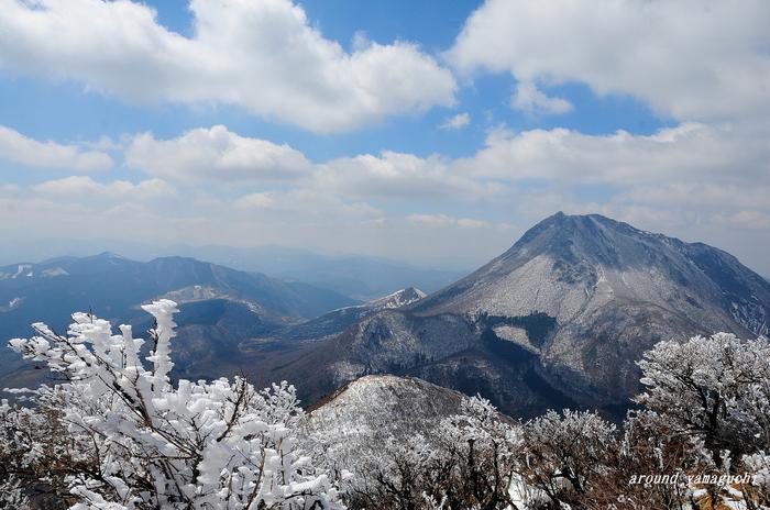 鶴見岳霧氷07.jpg