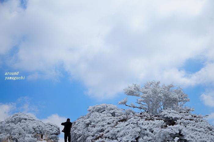 鶴見岳霧氷09.jpg