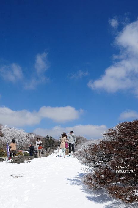 鶴見岳霧氷18.jpg