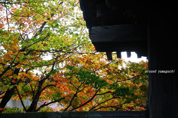 龍福寺08.jpg
