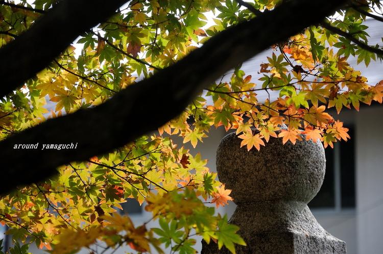 龍福寺09.jpg
