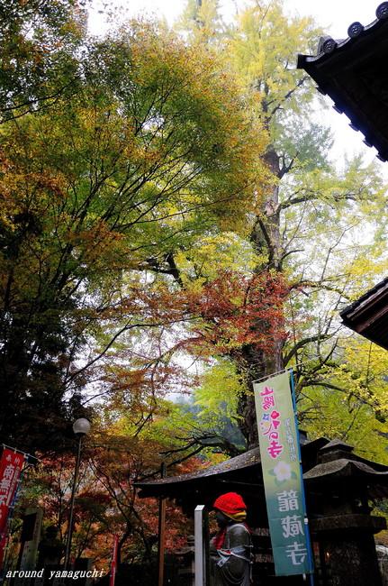 龍蔵寺01.jpg